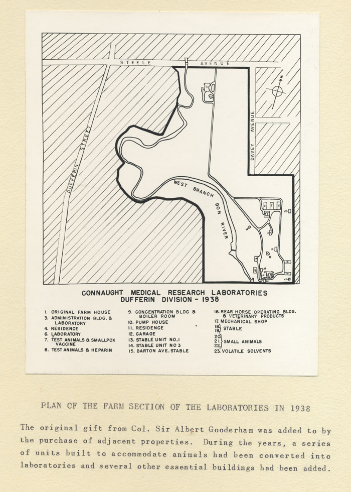 Map of the Connaught Laboratories Farm Section in 1938. Note the former three stables described as Laboratory (6), Test Animals and Smallpox Vaccine (7), and Test Animals and Heparin (8). Also note the newer stable units (13, 14) and the Barton Avenue Stable (15).