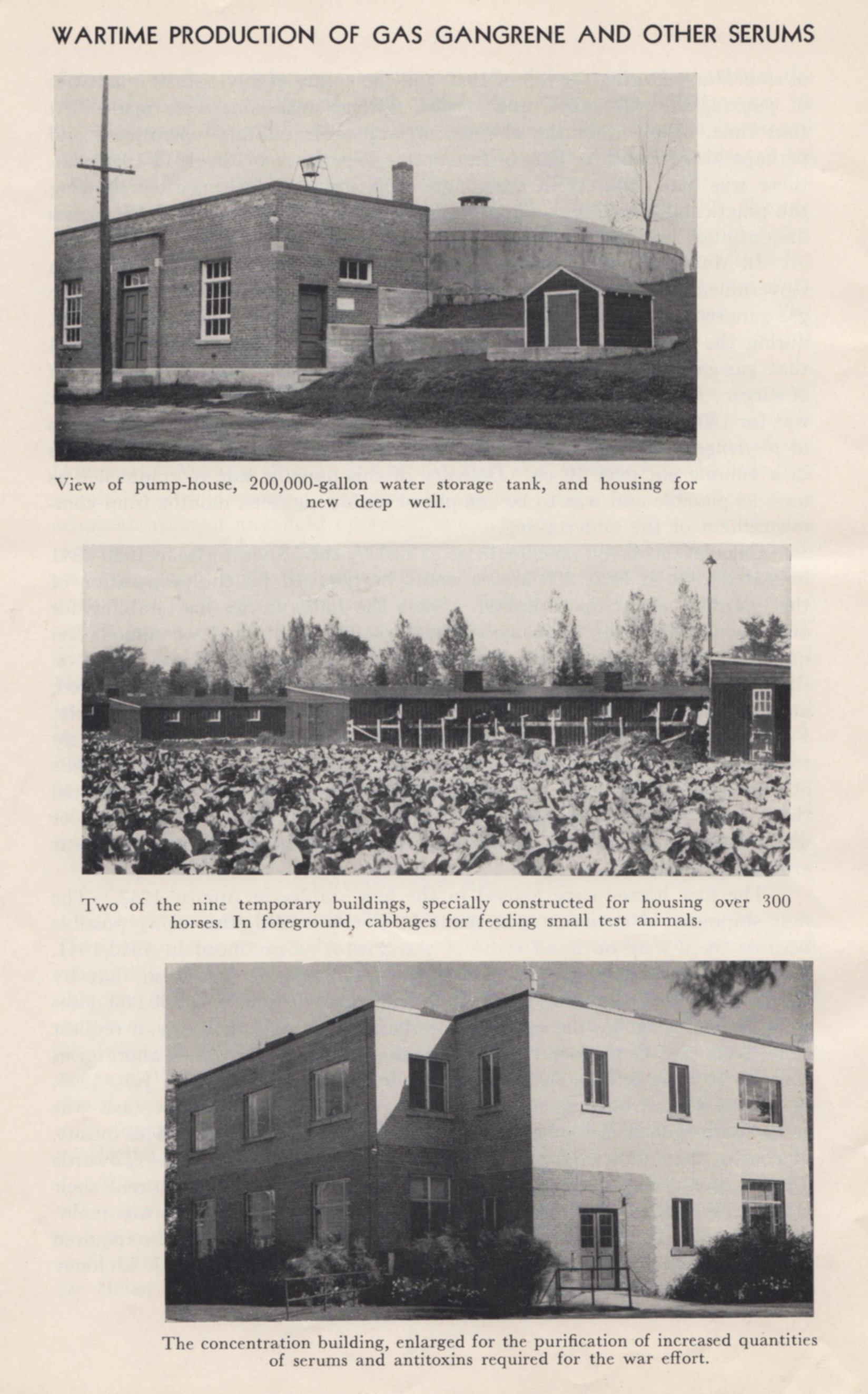 "Photos illustrating the expanded facilities at Connaught's Farm site to enable the large-scale production of gas-gangrene antitoxin. Image scanned from Connaught's ""Wartime Work 1939-1945"" booklet."