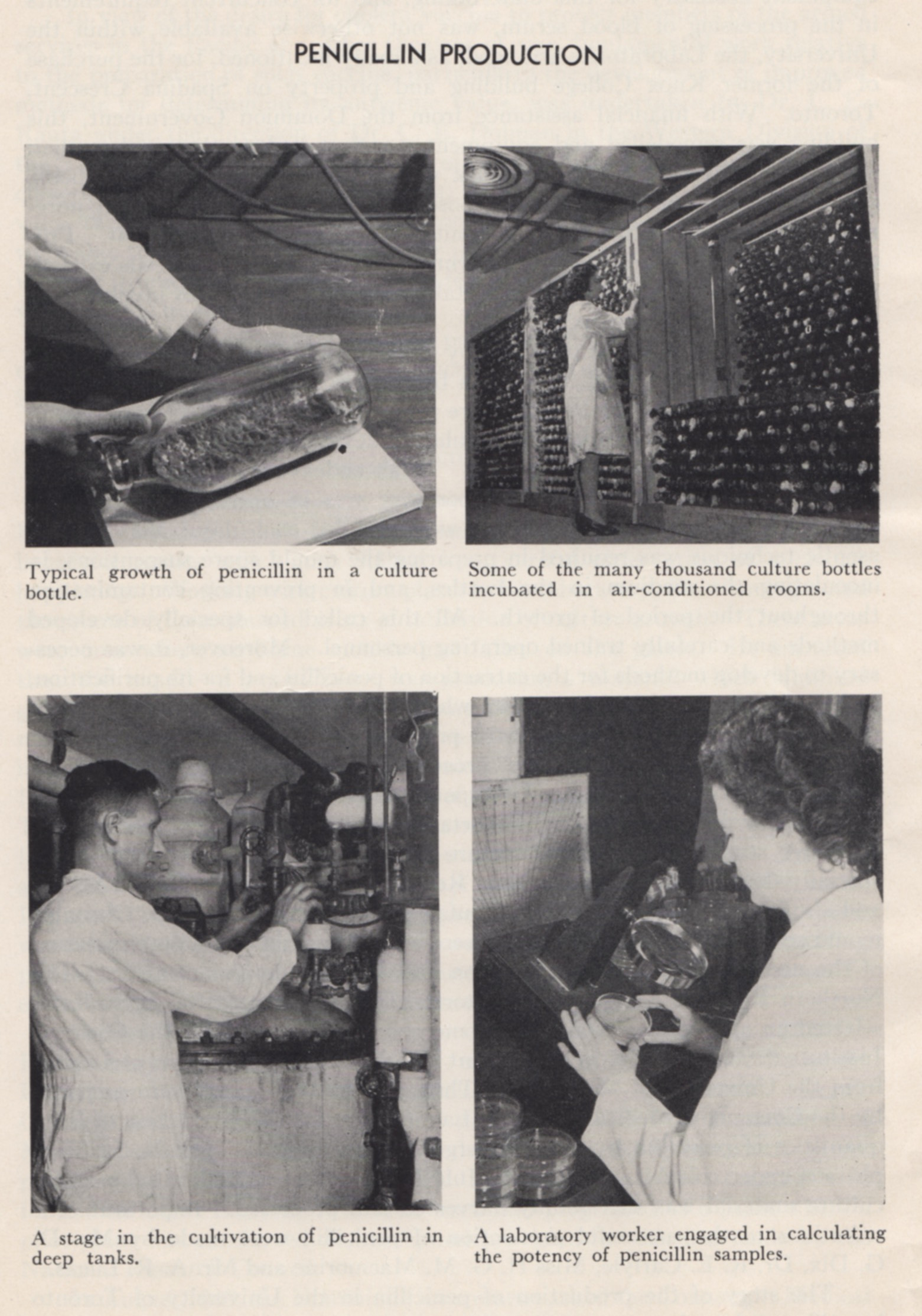"This set of photos illustrates the penicillin production process at Connaught Labs. Image scanned from Connaught's ""Wartime Work 1939-1945"" booklet."