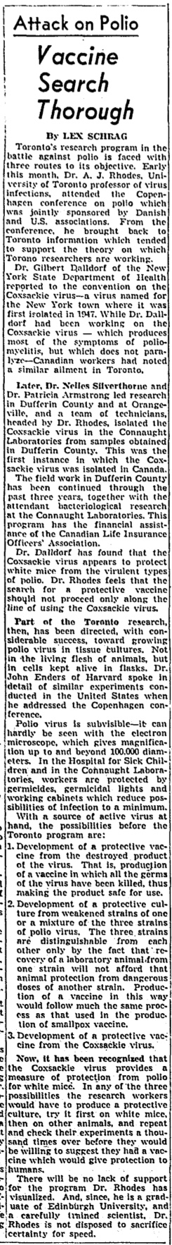 This article from the Globe and Mail of September 25, 1951, provides a detailed summary of the rapid developments of polio research discussed an a international conference held in Copenhagen, including work by Rhodes' group at Connaught