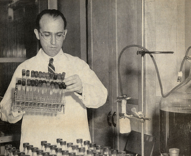 Dr. Jonas E. Salk in his lab at the University of Pittsburgh