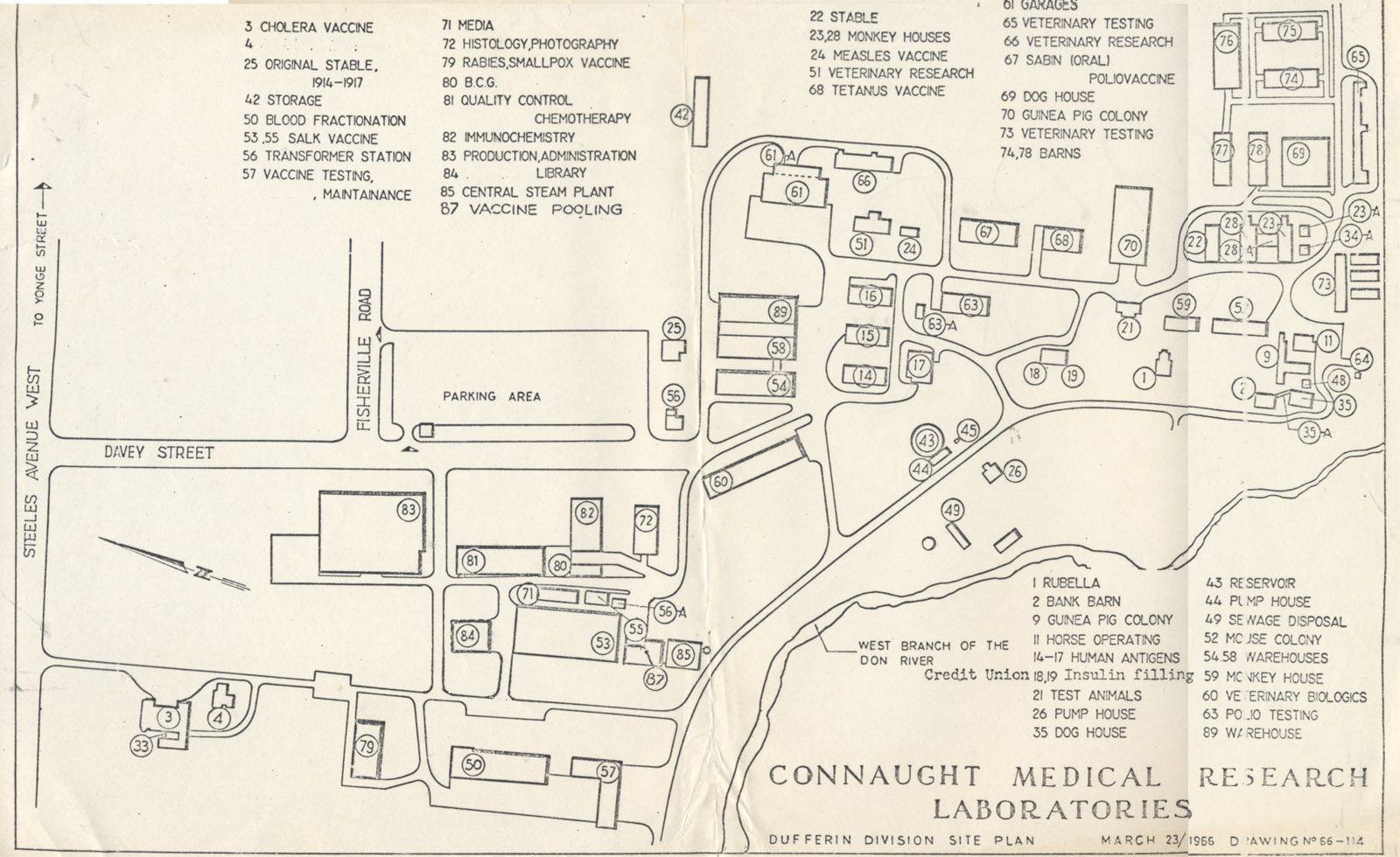 Site Plan, Connaught Medical Research Laboratories, Dufferin Division, March 1966.